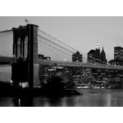 Fotomurales Decorativos - Ciudades - New York Skyline B&W