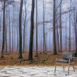 2658 - Misty Forest