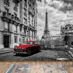 11674 - Black And White Red Car Paris