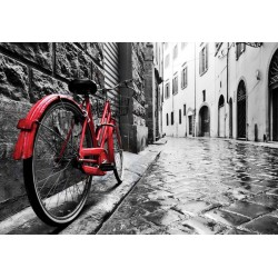 11675 - Black And White Red Bicycle Old Street