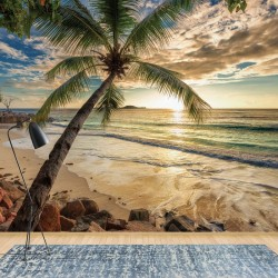 11732 - Tropical Beach Sunset