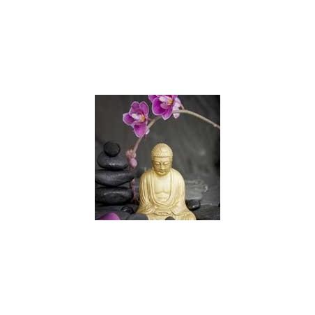 Fotomurales de Budas